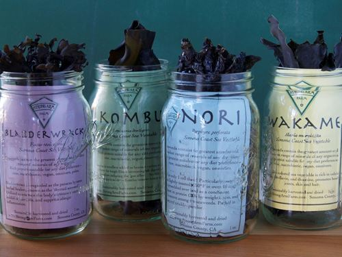 Picture of Strong Arm Farms Kombu