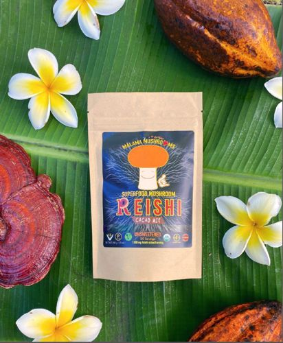 Picture of Malama Reishi hot Cacao drink mix